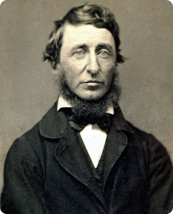 Transcendente Henry David Thoreau