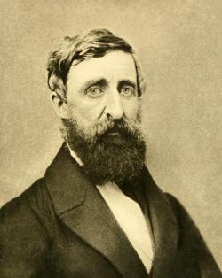 Simplifiquem, simplifiquem | Um Retrato de Thoreau